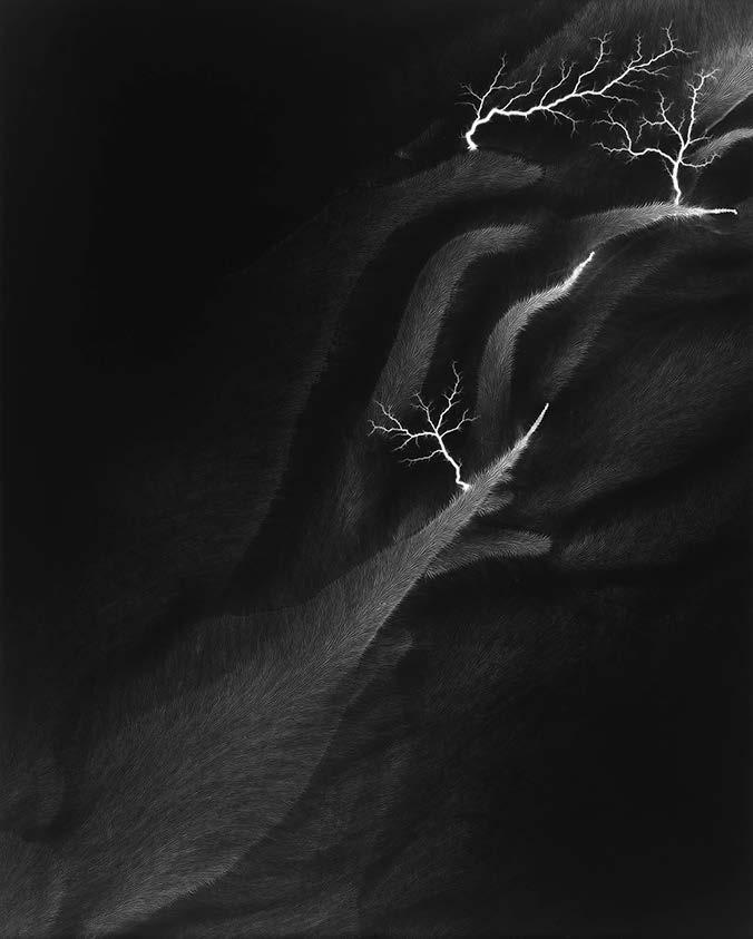 H.SUGIMOTO